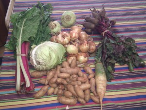 Red Root Herb and Vegetable Farm CSA